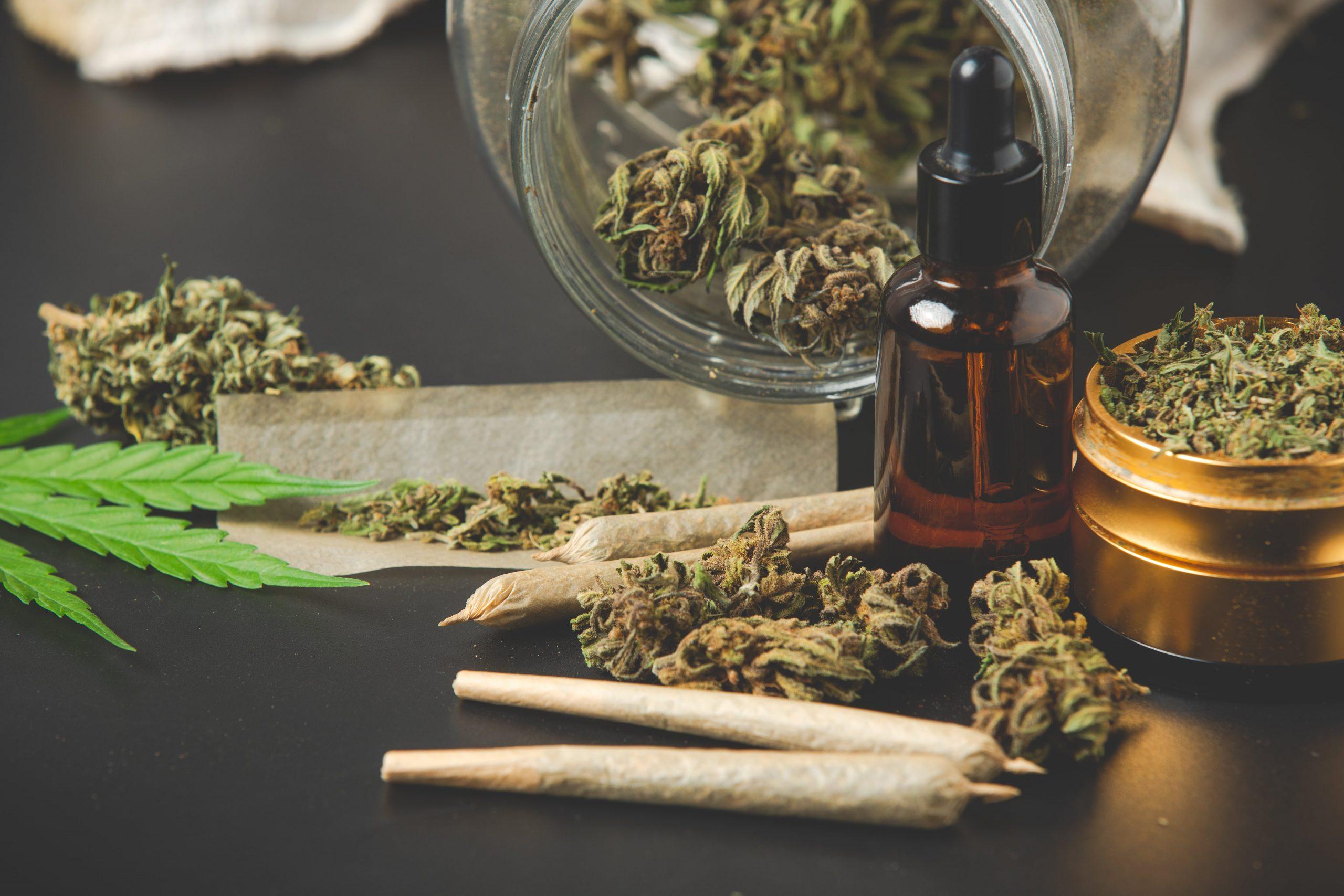 """Geresnis marihuanos atsargos: """"CannTrust Holdings"""" ir """"Organigram Holdings"""""""